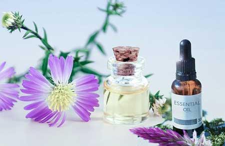 New To Essential Oils, Inhaling Essential Oils, Diffusing Essential Oils, Applying Essential Oils On Your Skin, Essential Oils On Your Pet